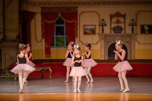 Cinderella 2017 Act I WBCDA-23